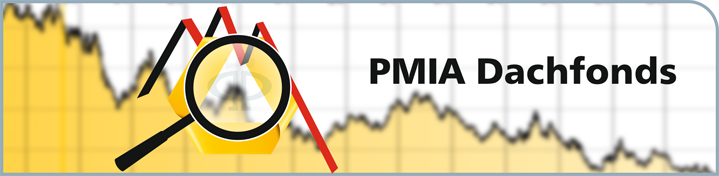 banner-pmia